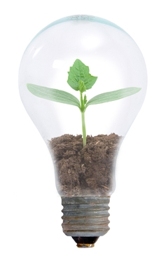 We help nourish and grow the creative ideas of you and your people.
